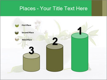 Medicinal Virtues PowerPoint Template - Slide 65