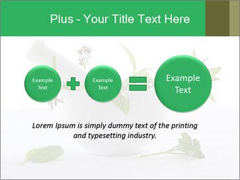 Medicinal Virtues PowerPoint Template - Slide 75