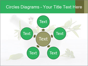 Medicinal Virtues PowerPoint Template - Slide 78