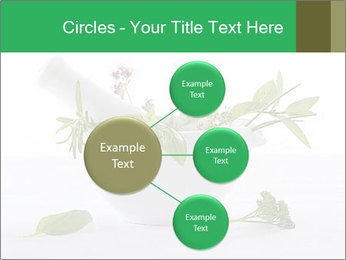 Medicinal Virtues PowerPoint Template - Slide 79