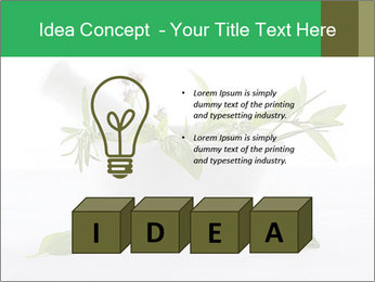 Medicinal Virtues PowerPoint Template - Slide 80