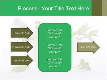 Medicinal Virtues PowerPoint Template - Slide 85