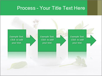 Medicinal Virtues PowerPoint Template - Slide 88