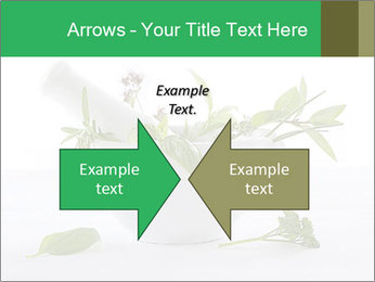 Medicinal Virtues PowerPoint Template - Slide 90