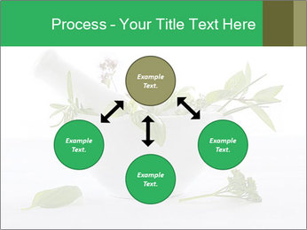 Medicinal Virtues PowerPoint Template - Slide 91