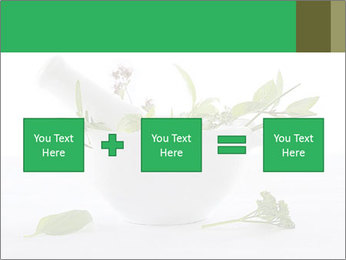 Medicinal Virtues PowerPoint Template - Slide 95