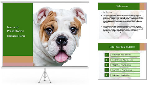 0000087516 PowerPoint Template