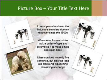 English bulldog PowerPoint Templates - Slide 24