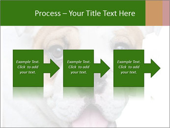 English bulldog PowerPoint Templates - Slide 88