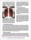 0000087528 Word Templates - Page 4