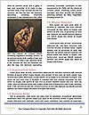 0000087538 Word Template - Page 4