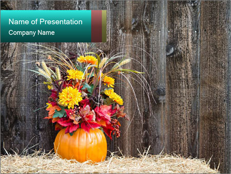 Pumpkin flower PowerPoint Templates