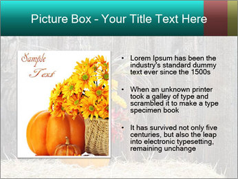 Pumpkin flower PowerPoint Template - Slide 13