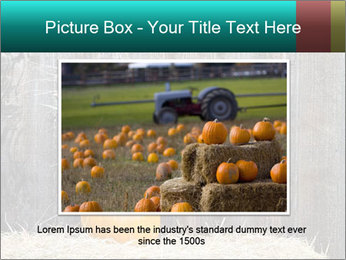 Pumpkin flower PowerPoint Templates - Slide 16