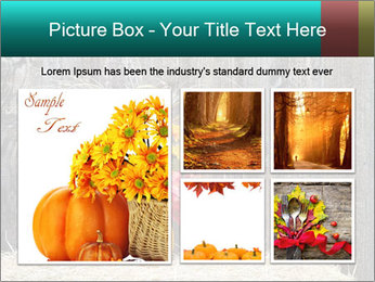 Pumpkin flower PowerPoint Template - Slide 19