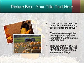 Pumpkin flower PowerPoint Template - Slide 20