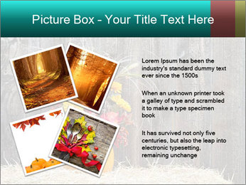 Pumpkin flower PowerPoint Templates - Slide 23