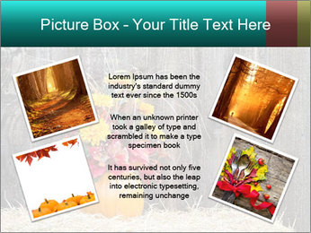 Pumpkin flower PowerPoint Template - Slide 24