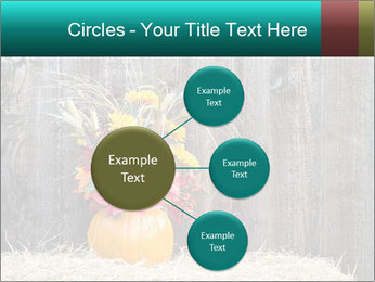 Pumpkin flower PowerPoint Templates - Slide 79
