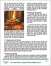 0000087540 Word Template - Page 4