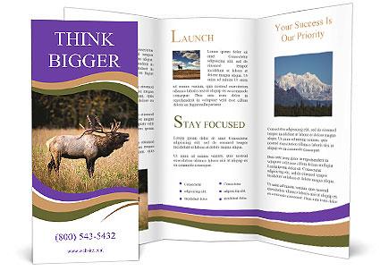 0000087550 Brochure Templates
