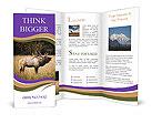0000087550 Brochure Template