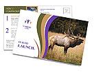 0000087550 Postcard Templates