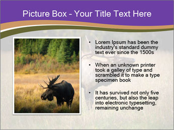 0000087550 PowerPoint Template - Slide 13