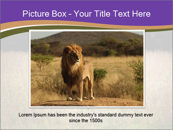 0000087550 PowerPoint Template - Slide 15