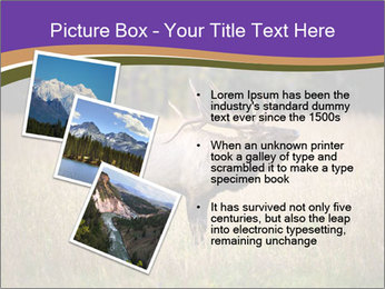 0000087550 PowerPoint Template - Slide 17
