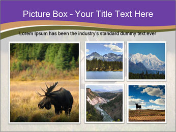 0000087550 PowerPoint Template - Slide 19
