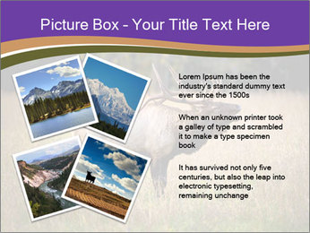 0000087550 PowerPoint Template - Slide 23