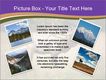 0000087550 PowerPoint Template - Slide 24