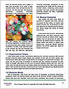 0000087558 Word Templates - Page 4