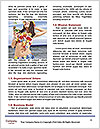 0000087559 Word Template - Page 4