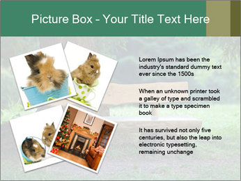 Park bench under tree PowerPoint Template - Slide 23