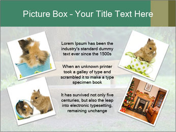 Park bench under tree PowerPoint Template - Slide 24