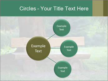 Park bench under tree PowerPoint Template - Slide 79