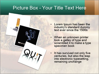 0000087589 PowerPoint Template - Slide 17