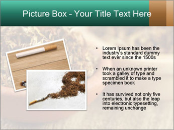 0000087589 PowerPoint Template - Slide 20
