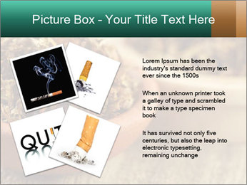 0000087589 PowerPoint Template - Slide 23