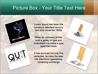 0000087589 PowerPoint Template - Slide 24