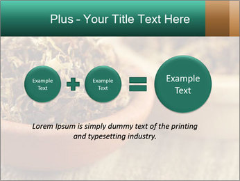 0000087589 PowerPoint Template - Slide 75
