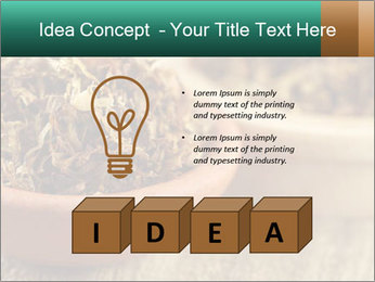0000087589 PowerPoint Template - Slide 80