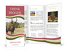 0000087597 Brochure Templates