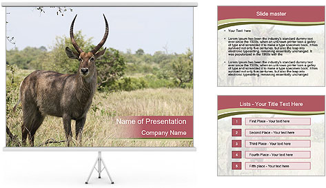 0000087597 PowerPoint Template