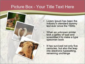 0000087597 PowerPoint Template - Slide 17