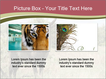 Waterbuck PowerPoint Template - Slide 18