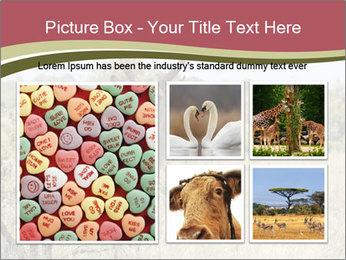 0000087597 PowerPoint Template - Slide 19