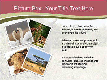 Waterbuck PowerPoint Template - Slide 23